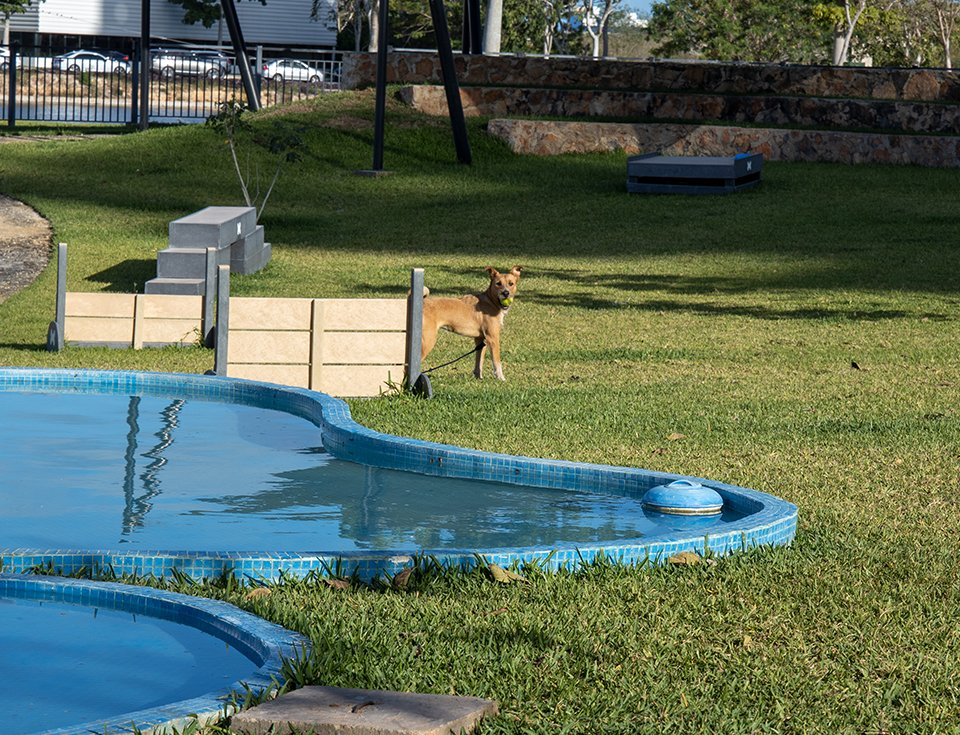 pet-park-cabo-norte-slider-6